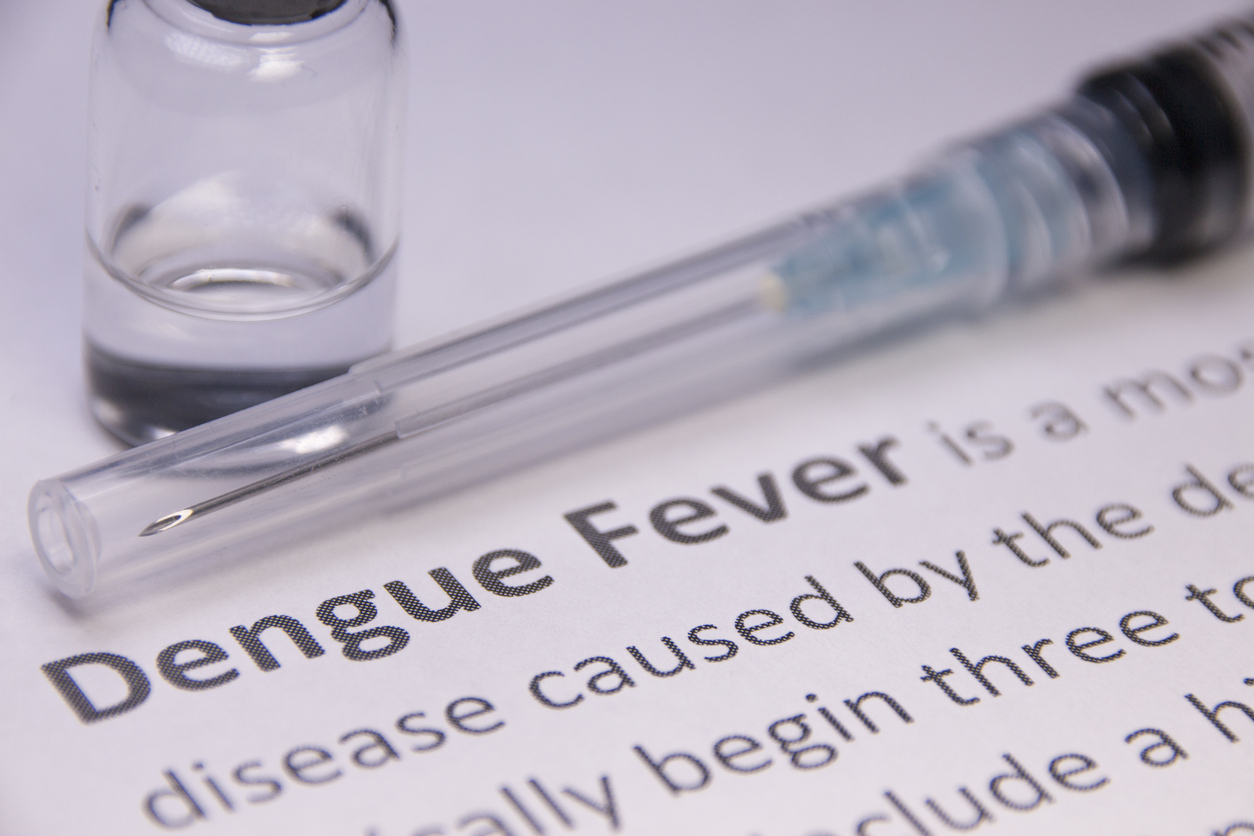 Dengue Fever Outbreak   SafeTravel